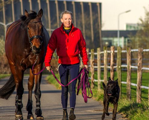 Betty_Lou_Luyken_paardenfotografie 16