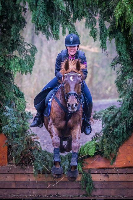 blog paardenfotografie