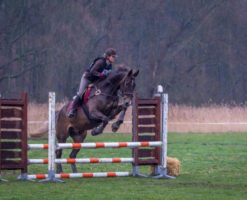 Springpaard wedstrijd_4