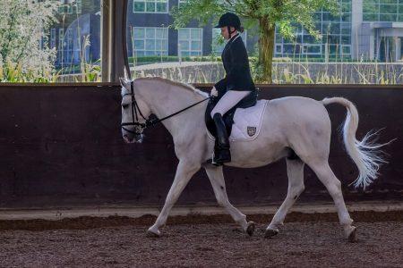 Meisje op paardje_2