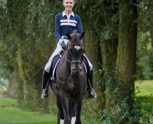 Rijfoto Trakeher paard