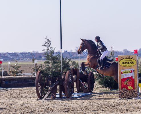 Paardenfotografie - SGW