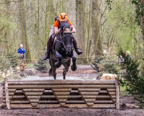 paardenfotografie SGW